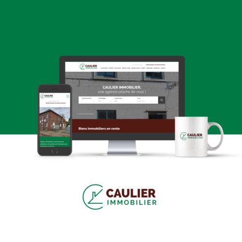 site web de Caulier-Immo.be, l'agence immobilier à Jurbise